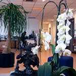 fotos-oficinas-blizzard (29)